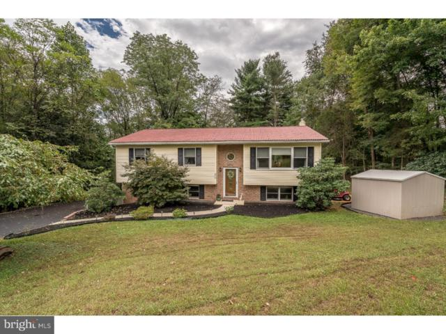 226 Oak Terrace Drive, BIRDSBORO, PA 19508 (#1007114336) :: Colgan Real Estate