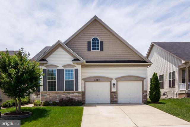 6020 Greenbrier River Road E, FREDERICKSBURG, VA 22407 (#1007154956) :: Colgan Real Estate