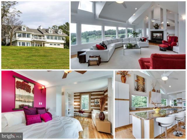 4800 Porterstown Road, KEEDYSVILLE, MD 21756 (#1007157344) :: Colgan Real Estate