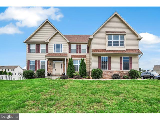 368 Southern View Drive, SMYRNA, DE 19977 (#1007264606) :: Colgan Real Estate