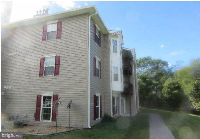 104 Timberlake Terr Terrace #5, STEPHENS CITY, VA 22655 (#1007368596) :: Colgan Real Estate