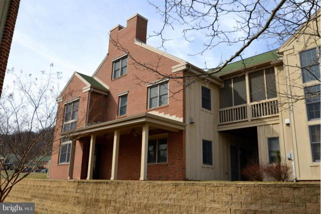 13894 Trailside Lane, MERCERSBURG, PA 17236 (#1007372800) :: The Joy Daniels Real Estate Group