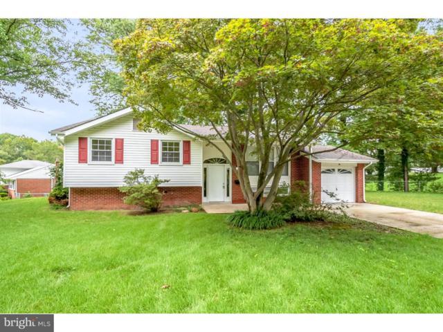 10 Windflower Drive, NEWARK, DE 19711 (#1007375216) :: Colgan Real Estate