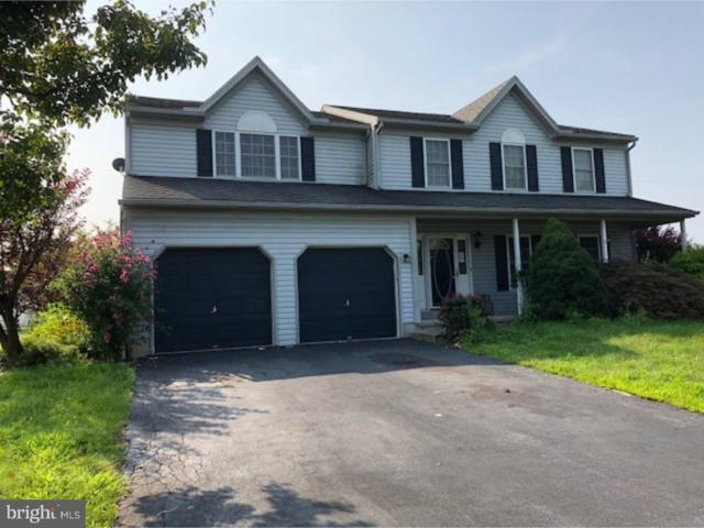 236 Loyalsock Drive, DOUGLASSVILLE, PA 19518 (#1007387320) :: Jim Bass Group of Real Estate Teams, LLC