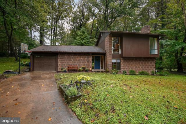 5091 Blacksmith Drive, COLUMBIA, MD 21044 (#1007410510) :: Colgan Real Estate