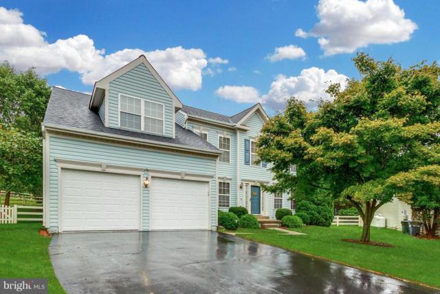 17296 Cedar Bluff Court, ROUND HILL, VA 20141 (#1007413590) :: Colgan Real Estate