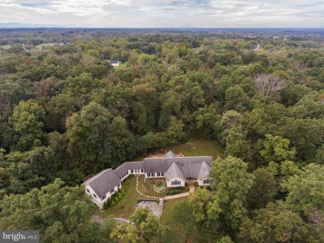 238 Turtle Lane, BERRYVILLE, VA 22611 (#1007431960) :: Colgan Real Estate