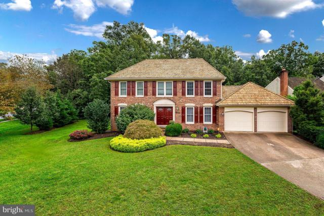 5201 Glen Meadow Road, CENTREVILLE, VA 20120 (#1007444878) :: Circadian Realty Group