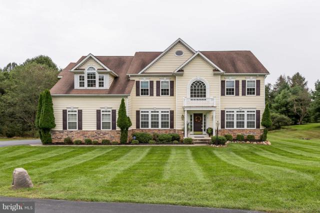 5 Locksley Court, PHOENIX, MD 21131 (#1007490196) :: Colgan Real Estate