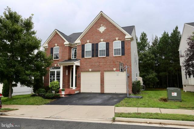 42233 St Huberts Place, CHANTILLY, VA 20152 (#1007522730) :: Colgan Real Estate