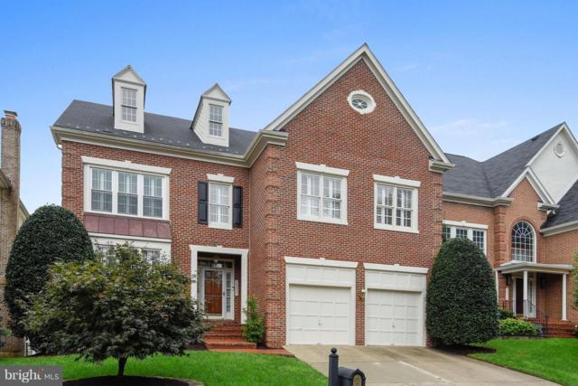 10421 Snow Point Drive, BETHESDA, MD 20814 (#1007533432) :: Colgan Real Estate