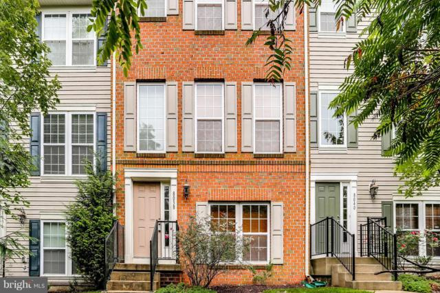 8038 Wright Place #101, JESSUP, MD 20794 (#1007534692) :: Maryland Residential Team