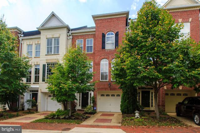 5260 Bessley Place, ALEXANDRIA, VA 22304 (#1007536680) :: Circadian Realty Group