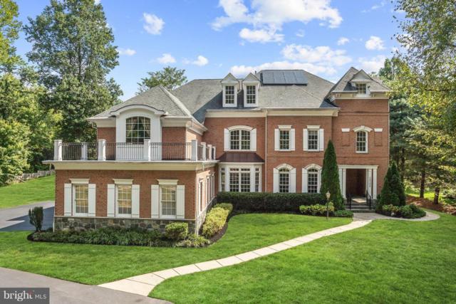 10108 Pasture Gate Lane, COLUMBIA, MD 21044 (#1007536850) :: Colgan Real Estate