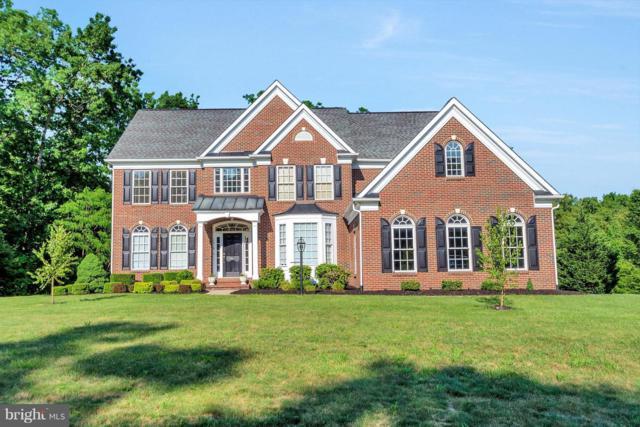 12018 Sawhill Boulevard, SPOTSYLVANIA, VA 22553 (#1007537398) :: Colgan Real Estate
