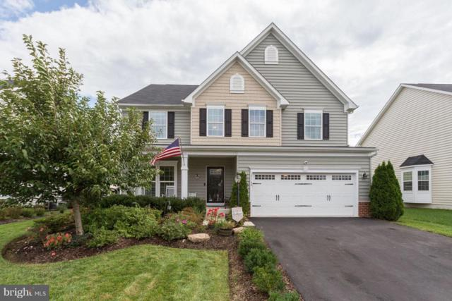 25780 Racing Sun Drive, ALDIE, VA 20105 (#1007541386) :: Colgan Real Estate