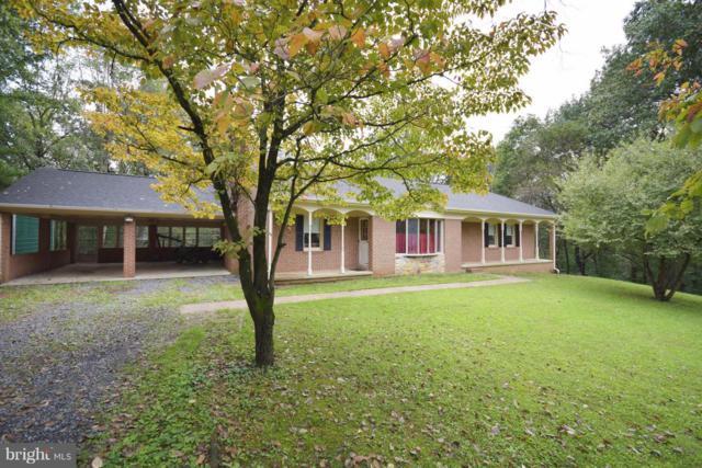 306 Hawksbill Pines Road, STANLEY, VA 22851 (#1007542234) :: Colgan Real Estate