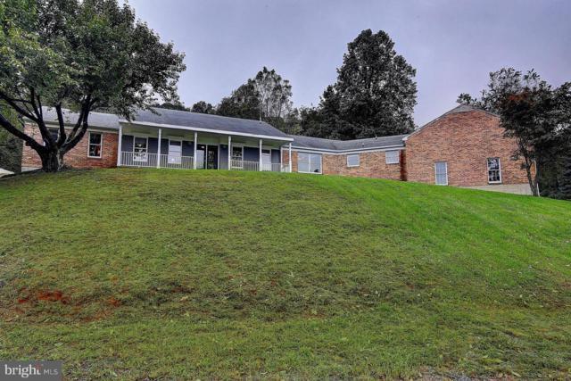 34150 Harry Byrd Highway, ROUND HILL, VA 20141 (#1007543492) :: Remax Preferred | Scott Kompa Group