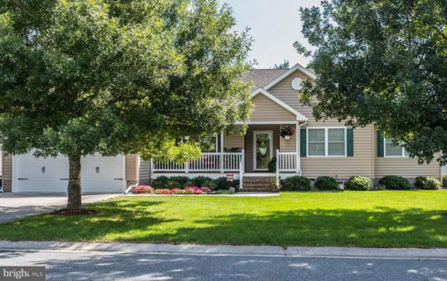 313 Buttercup Court, BERLIN, MD 21811 (#1007543818) :: Colgan Real Estate