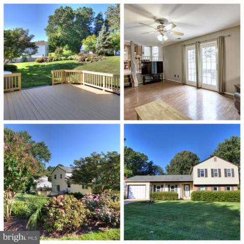 9381 Tartan View Drive, FAIRFAX, VA 22032 (#1007543860) :: The Withrow Group at Long & Foster