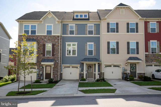 8119 Hickory Hollow Drive, GLEN BURNIE, MD 21060 (#1007544324) :: Great Falls Great Homes