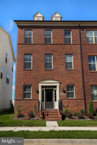 13805 Petrel Street, CLARKSBURG, MD 20871 (#1007545140) :: Colgan Real Estate