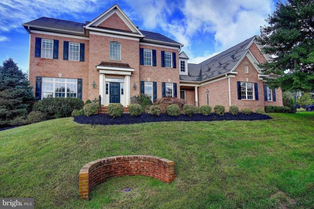 16319 Hunter Place, LEESBURG, VA 20176 (#1007545548) :: Remax Preferred | Scott Kompa Group