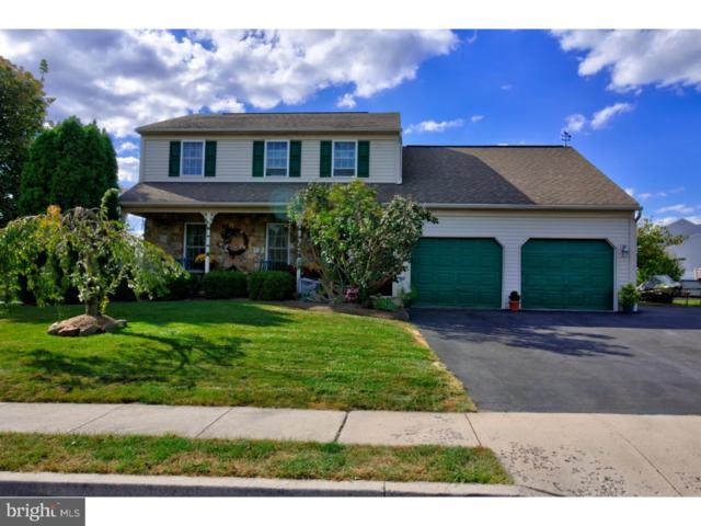 201 Penns Lane, DOUGLASSVILLE, PA 19518 (#1007547556) :: Jim Bass Group of Real Estate Teams, LLC