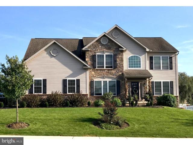 65 Virginia Avenue, SINKING SPRING, PA 19608 (#1007547758) :: Colgan Real Estate