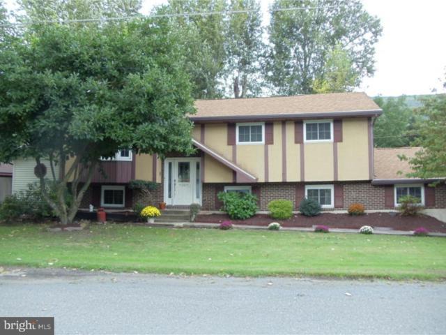 300 Willow Lane, NESQUEHONING, PA 18240 (#1007774582) :: Colgan Real Estate