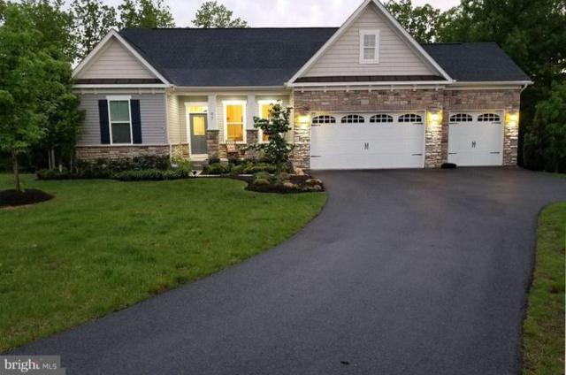 97 Trout River Terrace, FALLING WATERS, WV 25419 (#1007778136) :: Remax Preferred | Scott Kompa Group