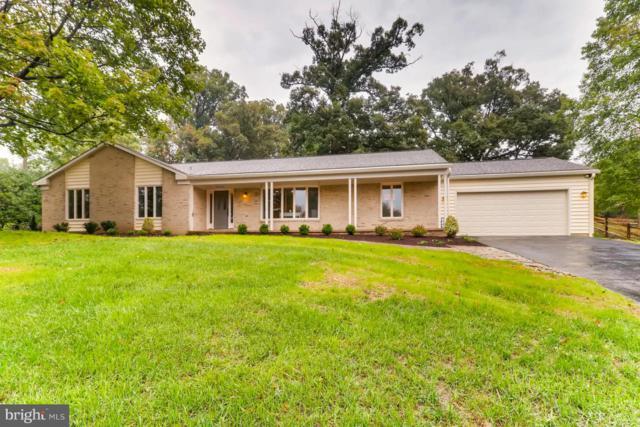 3707 Spring Meadow Drive, ELLICOTT CITY, MD 21042 (#1007838700) :: Colgan Real Estate