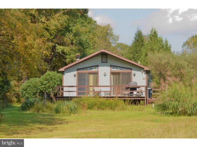 162 Willow Drive, JIM THORPE, PA 18229 (#1008078480) :: Remax Preferred | Scott Kompa Group