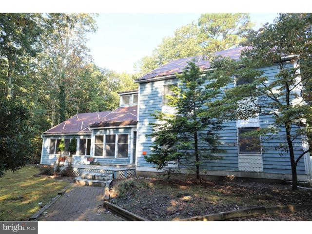 17 Peace Pipe Court, MEDFORD, NJ 08055 (#1008090690) :: Remax Preferred | Scott Kompa Group