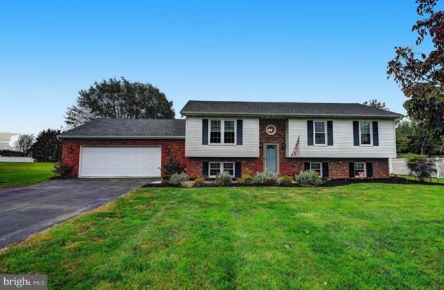 95 Ayers Drive, RISING SUN, MD 21911 (#1008141990) :: The Gus Anthony Team