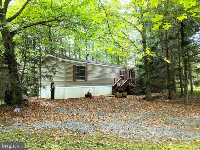 340 Bottom Road, BLAIN, PA 17006 (#1008234782) :: The Heather Neidlinger Team With Berkshire Hathaway HomeServices Homesale Realty