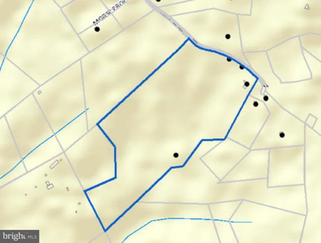 750 Lobo Lane, ARRINGTON, VA 22922 (#1008339902) :: Green Tree Realty