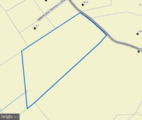 Lobo Lane, ARRINGTON, VA 22922 (#1008339904) :: Green Tree Realty