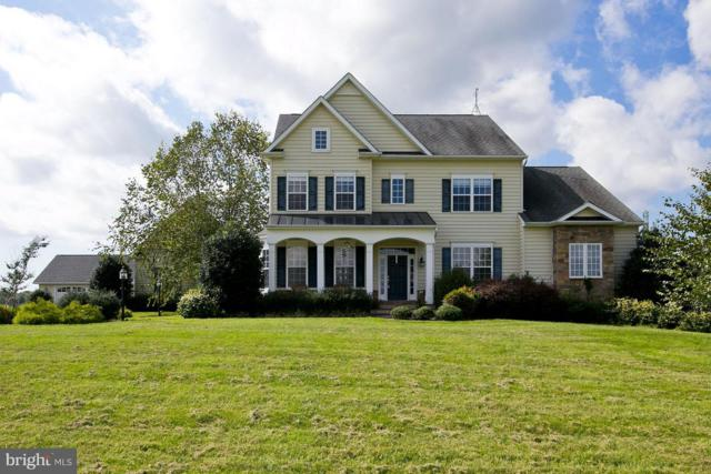 196 Crispin Trail, WINCHESTER, VA 22603 (#1008340092) :: Remax Preferred | Scott Kompa Group