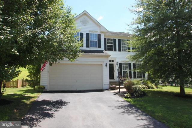 12336 Osprey Lane, CULPEPER, VA 22701 (#1008340234) :: Advance Realty Bel Air, Inc