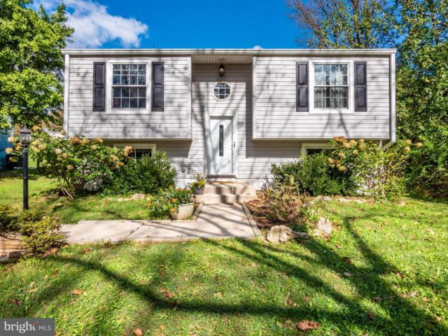 6551 Seedling Lane, COLUMBIA, MD 21045 (#1008340442) :: The Maryland Group of Long & Foster