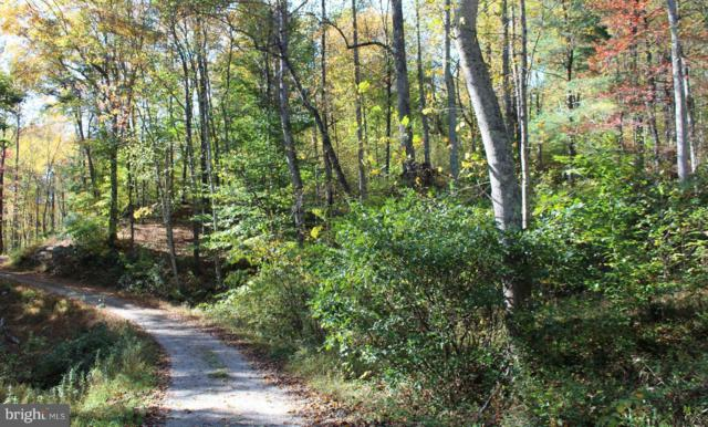 Lost Lane Road, MADISON, VA 22727 (#1008340528) :: Homes to Heart Group