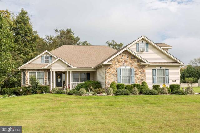 280 Amanda Drive, LITTLESTOWN, PA 17340 (#1008340624) :: Colgan Real Estate