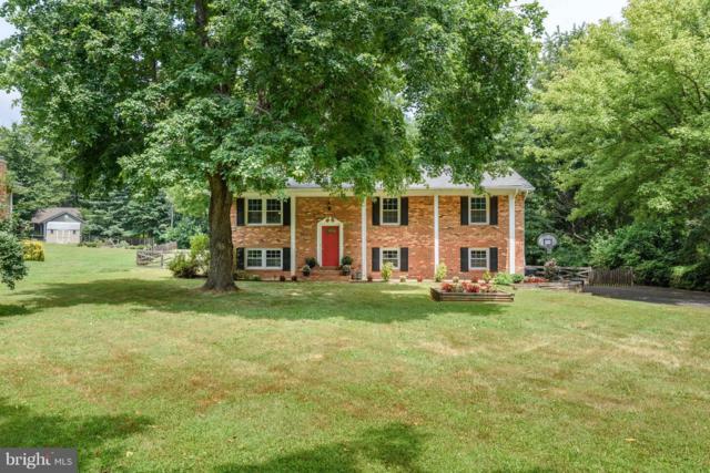15804 Palmer Lane, HAYMARKET, VA 20169 (#1008340714) :: Colgan Real Estate