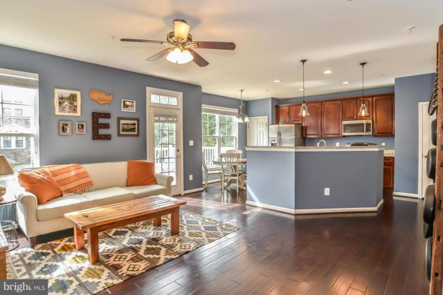 42223 Canary Grass Square, ALDIE, VA 20105 (#1008340896) :: The Putnam Group