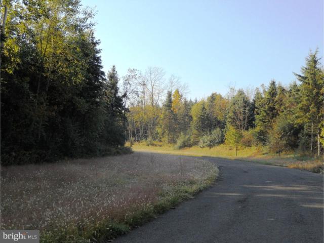 1207 Evergreen Road, RIEGELSVILLE, PA 18077 (#1008342244) :: REMAX Horizons