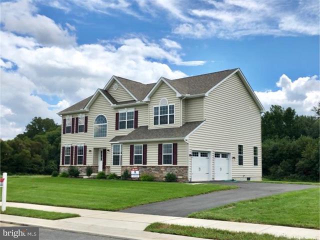399 Shapley Drive, SMYRNA, DE 19977 (#1008342376) :: Colgan Real Estate