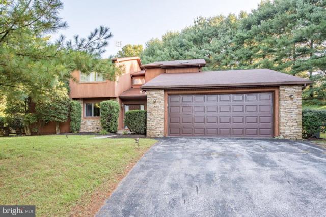 3752 Birch Lane, OWINGS MILLS, MD 21117 (#1008343626) :: Colgan Real Estate