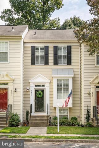6623 Skylemar Trail, CENTREVILLE, VA 20121 (#1008343870) :: Colgan Real Estate
