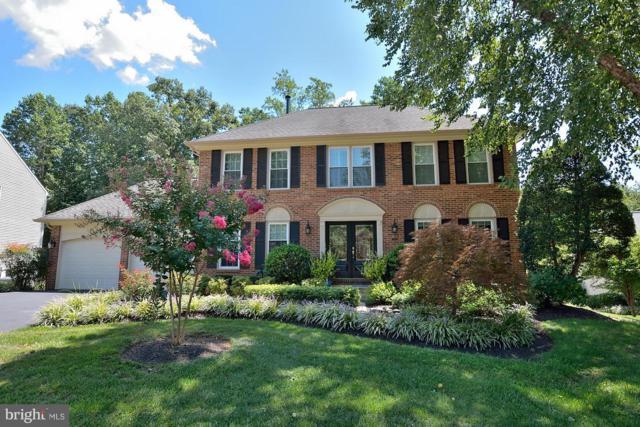 7821 Lakeland Valley Drive, SPRINGFIELD, VA 22153 (#1008344134) :: Colgan Real Estate